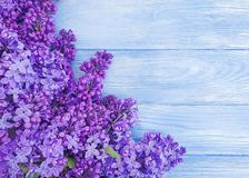 Beautiful lilac flower vintage design april on blue wooden background frame. Beautiful lilac flower blue wooden background frame vintage design april royalty free stock photos