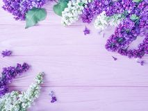 Beautiful lilac flower on wooden background frame. Beautiful lilac flower wooden background frame stock photos