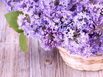 Beautiful lilac flowers in a basket Stock Images