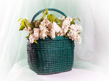 Beautiful lilac flowers in basket Stock Images