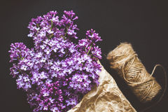 Beautiful lilac flowers on a dark background, vintage colors Royalty Free Stock Images