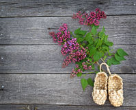 Beautiful lilac flowers and sandals made of bark Royalty Free Stock Photo