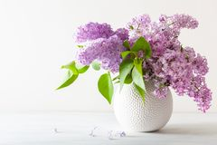 Beautiful lilac flowers in vase on white background stock photos