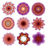 Beautiful lilac and orange ornament collection Royalty Free Stock Photography