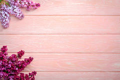 The beautiful lilac on a pink wooden background, copy spase Stock Photography
