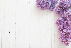 The beautiful lilac on  wooden background Royalty Free Stock Photography