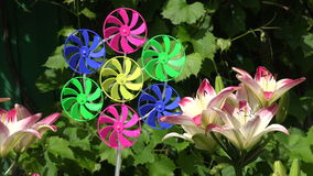 Beautiful lilies in summer garden and windmill toy stock video