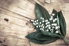 Beautiful  lilies of the valley on old wooden background Stock Photography