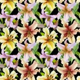 Beautiful lily flowers with green leaves on black background. Seamless floral pattern. Watercolor painting. Hand painted illustration. Design of fabric Stock Photos