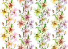 Beautiful lily flowers with green leaves in straight lines on white background. Seamless floral pattern. Watercolor painting. Hand drawn and painted stock illustration
