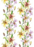 Beautiful lily flowers with green leaves in straight lines on white background. Seamless floral pattern. Watercolor painting. Hand drawn and painted Royalty Free Stock Image