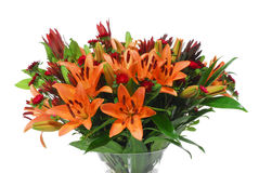 Beautiful lily orange flowers with green leaf Royalty Free Stock Image