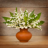Beautiful lily of the valley Royalty Free Stock Photo