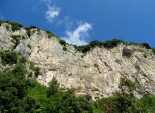 Beautiful limestone wall and green Royalty Free Stock Images