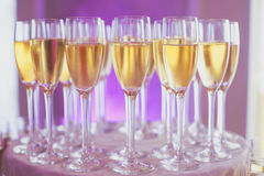 Beautiful line of different colored alcohol cocktails, tequila, martini, vodka, and others on decorated catering banquet table Stock Image
