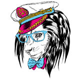 Beautiful lion in the captain`s cap. King of beasts. Vector illustration for greeting card, poster, or print on clothes. Sailor. Stock Photo