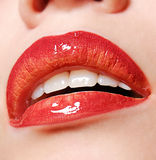 Beautiful lips Royalty Free Stock Photos