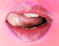 Beautiful lips Stock Photography