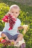 Beautiful little baby boy eats banana Royalty Free Stock Photos