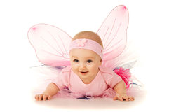 Beautiful little baby in costume isolated Royalty Free Stock Photo