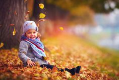 Beautiful little baby girl sitting in fallen leaves at autumn park Stock Images