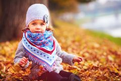 Beautiful little baby girl sitting in fallen leaves at autumn park Royalty Free Stock Photos