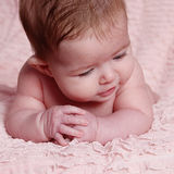 Beautiful little baby girl in studio Royalty Free Stock Photography