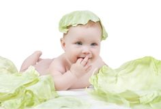 Beautiful little baby on a white background with green cabbage stock image