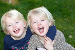 Beautiful little blond identical twins girls. Posing together on green grass laughing at the camera Stock Photo