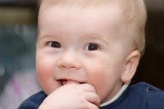 Beautiful little boy. Stock Photography
