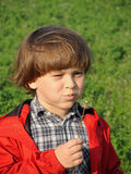 Beautiful little boy blowing dandelion. Happiness, fashionable concept Royalty Free Stock Photos