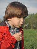 Beautiful little boy blowing dandelion. Royalty Free Stock Images