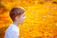 Beautiful little boy catches soap bubbles Royalty Free Stock Photo