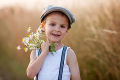 Beautiful little boy in daisy field on sunset Royalty Free Stock Photography