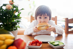 Beautiful little boy, eating sandwich at home, vegetables on the Stock Photos