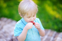 Beautiful little boy eating strawberry during picnic in summer park Royalty Free Stock Photography