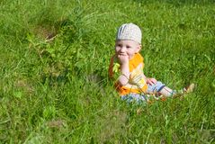 Beautiful little boy looks in green  meadow Royalty Free Stock Photos