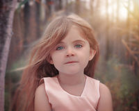 Beautiful Little Child in Nature. A little girl has wind blowing in her hair and posing for a portrait in the nature woods for a photography or beauty concept stock images
