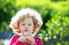 Beautiful little curly girl blowing dandelion Royalty Free Stock Photography