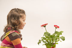 Beautiful little girl admiring flowers Stock Photos