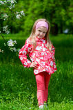 The beautiful little girl in apple tree park Royalty Free Stock Images