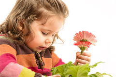 Beautiful little girl arranging flowers in vase Stock Photo