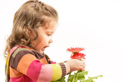 Beautiful little girl arranging flowers in vase Royalty Free Stock Images