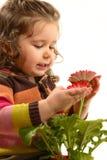 Beautiful little girl arranging flowers in vase Stock Photo