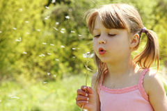 Beautiful little girl blowing on a dandelion Stock Photos