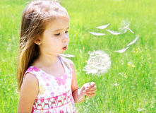 Beautiful little girl blowing dandelion Royalty Free Stock Images