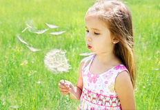 Beautiful little girl blowing dandelion Royalty Free Stock Photo