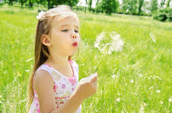 Beautiful little girl blowing dandelion Stock Photos