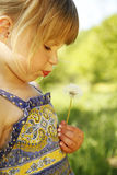 Beautiful little girl with dandelion in nature Royalty Free Stock Images