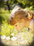 Beautiful little girl with dandelion in nature Royalty Free Stock Photo